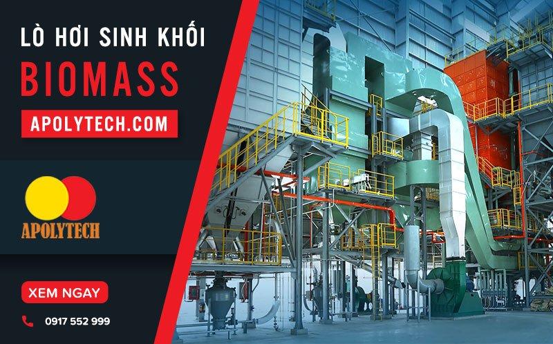 Lo-Hoi-Sinh-Khoi-Biomass-Xu-The-Tat-Yeu-Trong-San-Xuat