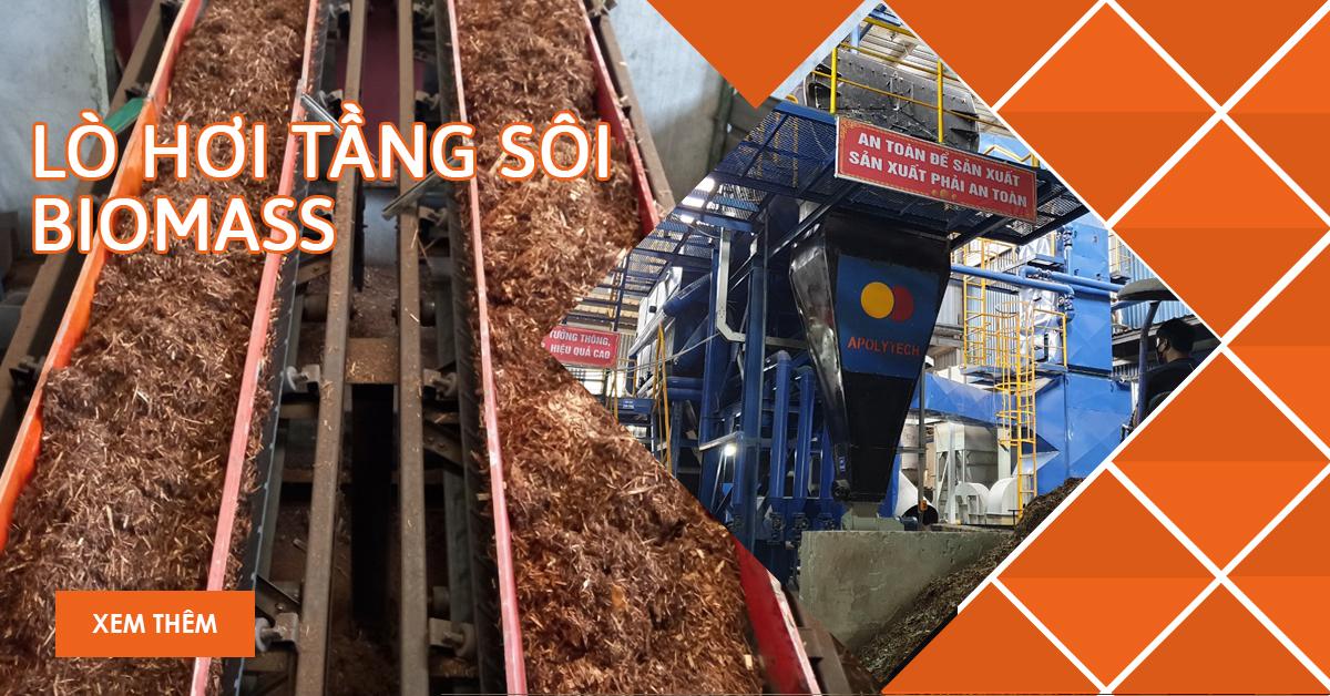 lo hoi tang soi biomass
